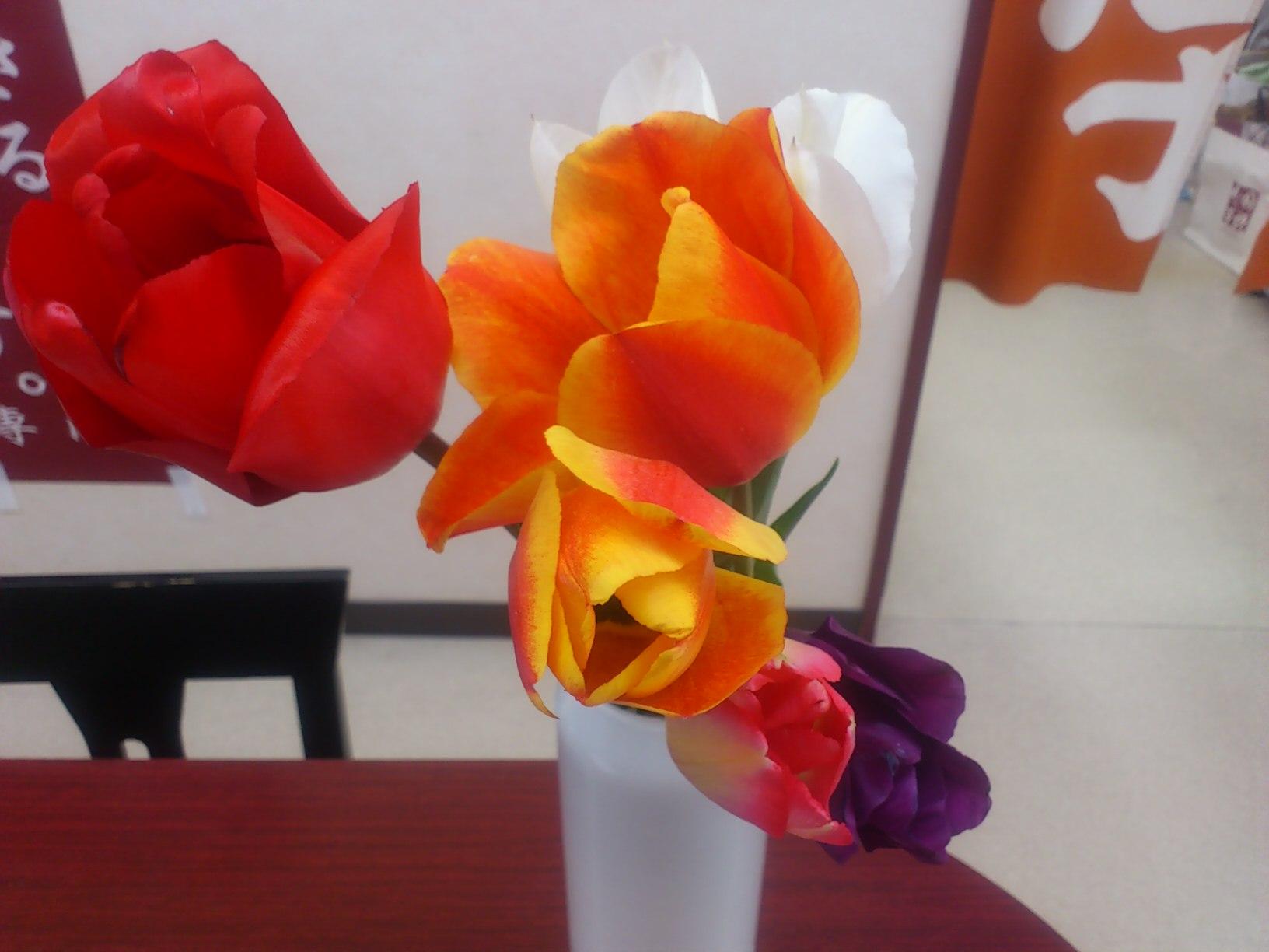 春ですね(^^)v_f0151639_11141384.jpg