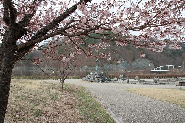 地元の桜は良いものです・・・_b0100253_1623627.jpg