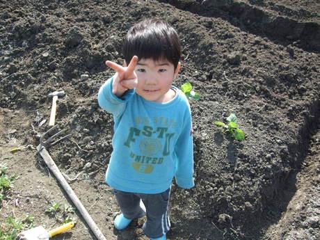 我が家の畑9 夏野菜_d0191262_2354146.jpg