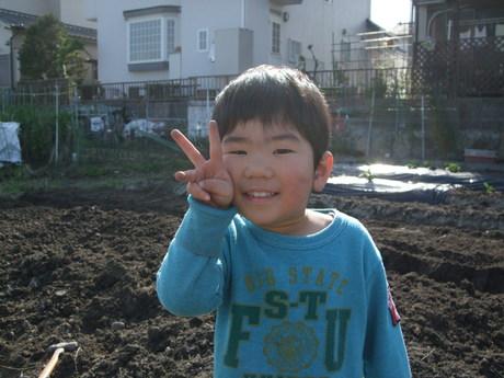 我が家の畑9 夏野菜_d0191262_237578.jpg