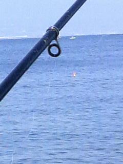 今年初釣行は三保_f0228680_9265545.jpg