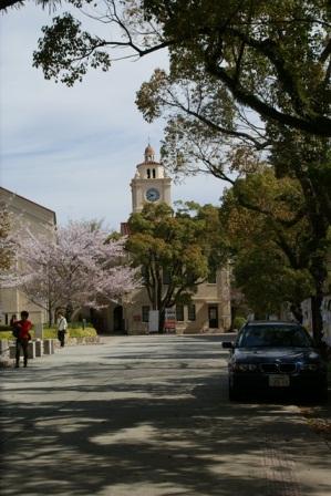 素敵な桜をさがして・・・関西学院大学の桜、夙川の桜、王子動物園の桜、九州の桜、お城の桜(3/7)_d0181492_21475871.jpg