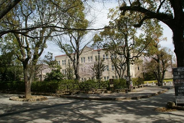 素敵な桜をさがして・・・関西学院大学の桜、夙川の桜、王子動物園の桜、九州の桜、お城の桜(3/7)_d0181492_2148103.jpg