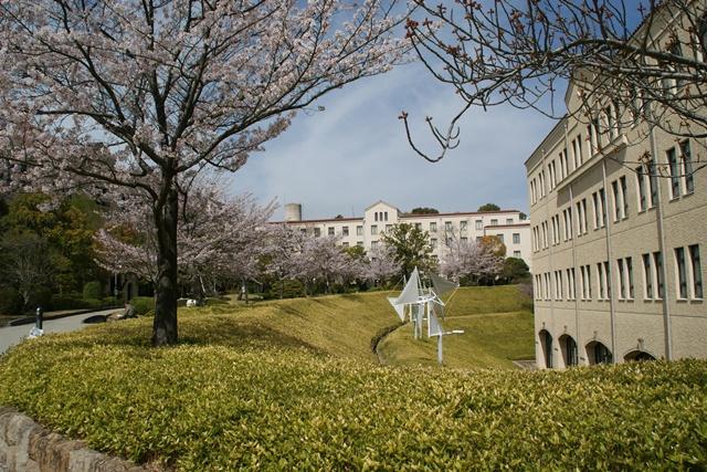 素敵な桜をさがして・・・関西学院大学の桜、夙川の桜、王子動物園の桜、九州の桜、お城の桜(3/7)_d0181492_21491972.jpg
