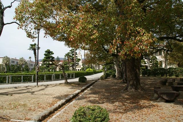 素敵な桜をさがして・・・関西学院大学の桜、夙川の桜、王子動物園の桜、九州の桜、お城の桜(3/7)_d0181492_21505729.jpg