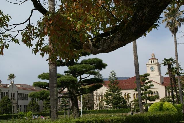 素敵な桜をさがして・・・関西学院大学の桜、夙川の桜、王子動物園の桜、九州の桜、お城の桜(3/7)_d0181492_21511389.jpg
