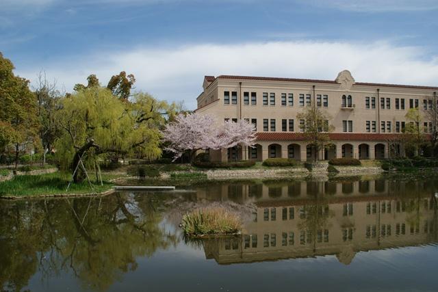 素敵な桜をさがして・・・関西学院大学の桜、夙川の桜、王子動物園の桜、九州の桜、お城の桜(3/7)_d0181492_2154171.jpg