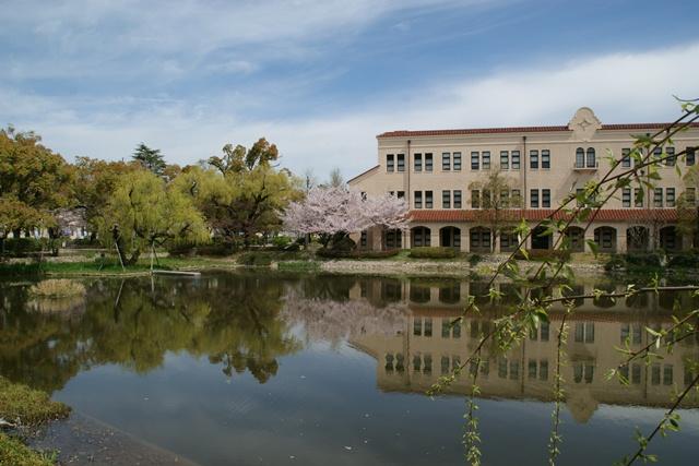素敵な桜をさがして・・・関西学院大学の桜、夙川の桜、王子動物園の桜、九州の桜、お城の桜(3/7)_d0181492_21543021.jpg