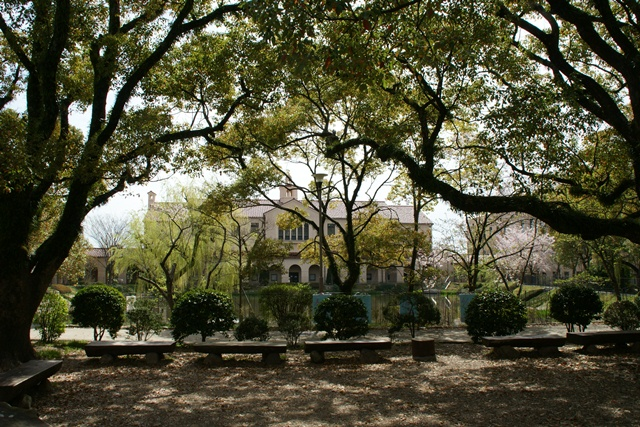 素敵な桜をさがして・・・関西学院大学の桜、夙川の桜、王子動物園の桜、九州の桜、お城の桜(3/7)_d0181492_2154377.jpg