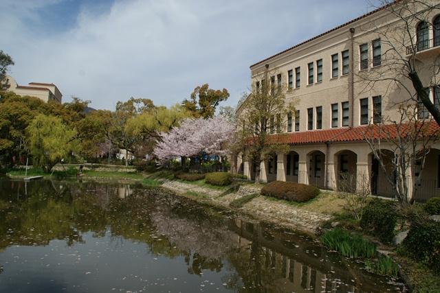 素敵な桜をさがして・・・関西学院大学の桜、夙川の桜、王子動物園の桜、九州の桜、お城の桜(3/7)_d0181492_21545624.jpg