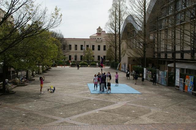 素敵な桜をさがして・・・関西学院大学の桜、夙川の桜、王子動物園の桜、九州の桜、お城の桜(3/7)_d0181492_2201071.jpg