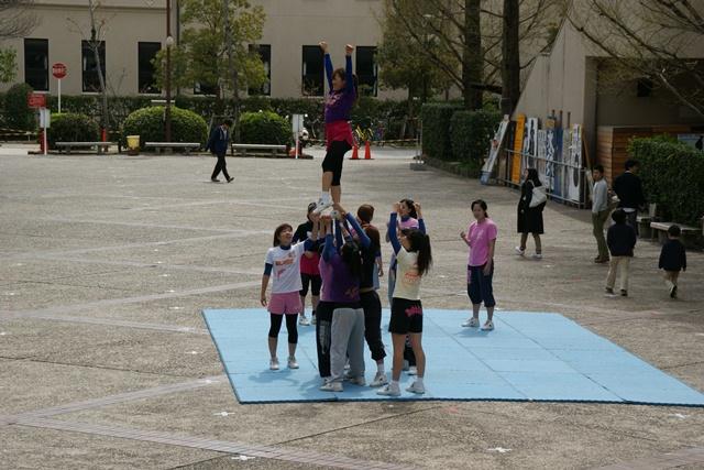 素敵な桜をさがして・・・関西学院大学の桜、夙川の桜、王子動物園の桜、九州の桜、お城の桜(3/7)_d0181492_2202477.jpg