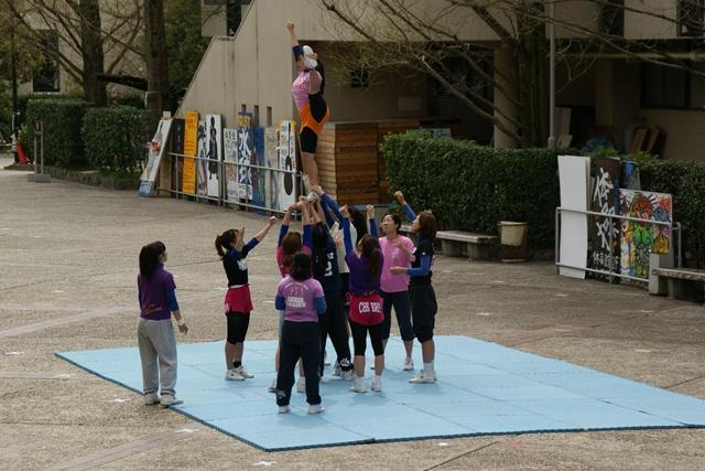 素敵な桜をさがして・・・関西学院大学の桜、夙川の桜、王子動物園の桜、九州の桜、お城の桜(3/7)_d0181492_221494.jpg