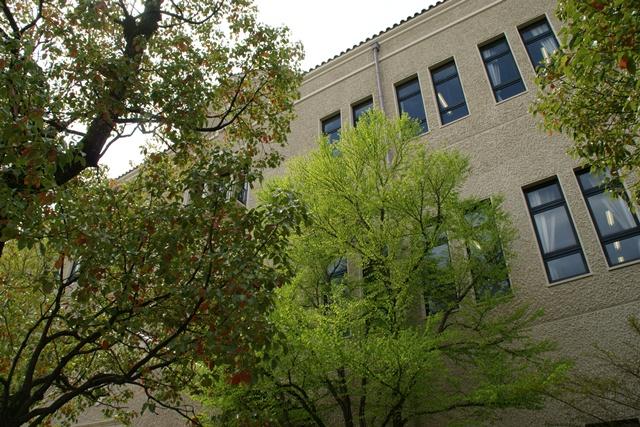 素敵な桜をさがして・・・関西学院大学の桜、夙川の桜、王子動物園の桜、九州の桜、お城の桜(3/7)_d0181492_2253327.jpg