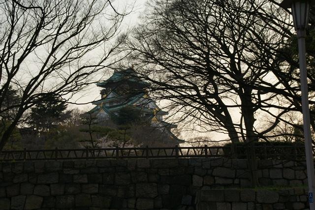 素敵な桜をさがして・・・・大阪城の桜、夙川の桜、王子動物園の桜、大学の桜、九州の桜(4/7)_d0181492_23254898.jpg
