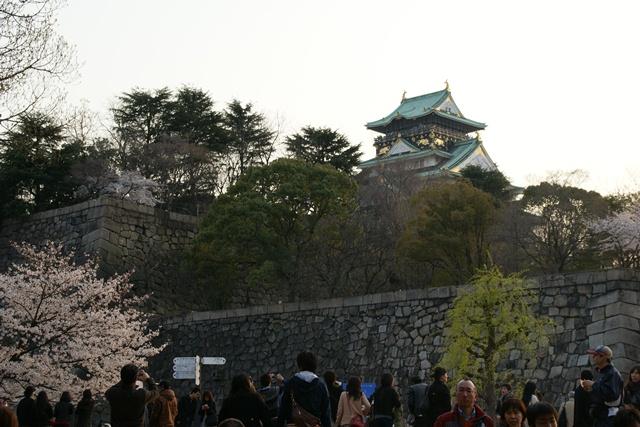 素敵な桜をさがして・・・・大阪城の桜、夙川の桜、王子動物園の桜、大学の桜、九州の桜(4/7)_d0181492_23265476.jpg
