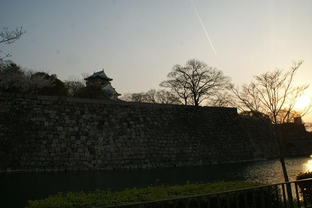 素敵な桜をさがして・・・・大阪城の桜、夙川の桜、王子動物園の桜、大学の桜、九州の桜(4/7)_d0181492_23273579.jpg