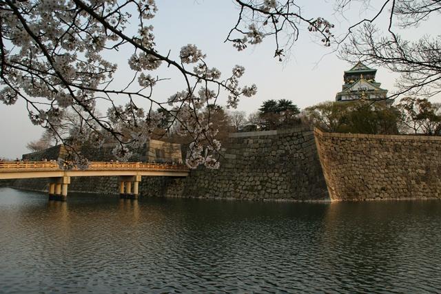 素敵な桜をさがして・・・・大阪城の桜、夙川の桜、王子動物園の桜、大学の桜、九州の桜(4/7)_d0181492_23282197.jpg