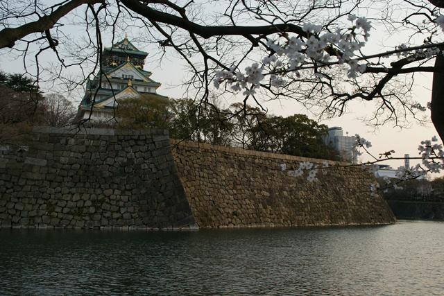 素敵な桜をさがして・・・・大阪城の桜、夙川の桜、王子動物園の桜、大学の桜、九州の桜(4/7)_d0181492_2328449.jpg