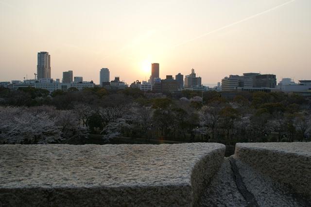 素敵な桜をさがして・・・・大阪城の桜、夙川の桜、王子動物園の桜、大学の桜、九州の桜(4/7)_d0181492_2333306.jpg