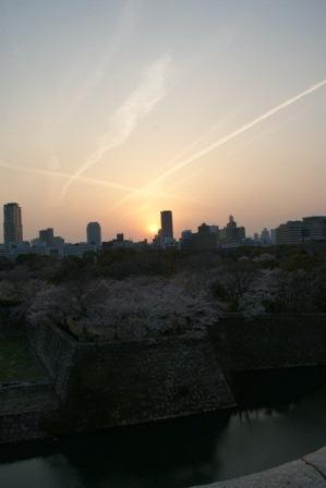 素敵な桜をさがして・・・・大阪城の桜、夙川の桜、王子動物園の桜、大学の桜、九州の桜(4/7)_d0181492_23343760.jpg