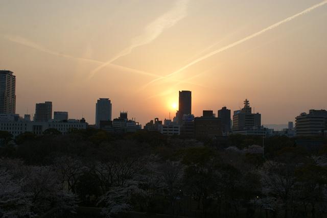 素敵な桜をさがして・・・・大阪城の桜、夙川の桜、王子動物園の桜、大学の桜、九州の桜(4/7)_d0181492_2334412.jpg