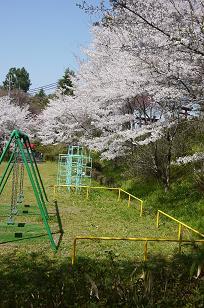 日本の春_f0226293_926323.jpg