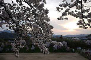 日本の春_f0226293_928126.jpg
