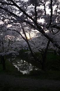 日本の春_f0226293_9284578.jpg