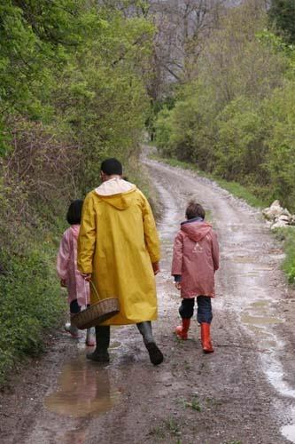 雨上がりのお散歩_f0106597_3572465.jpg