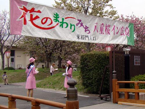 広島造幣局の桜_a0047200_8261288.jpg