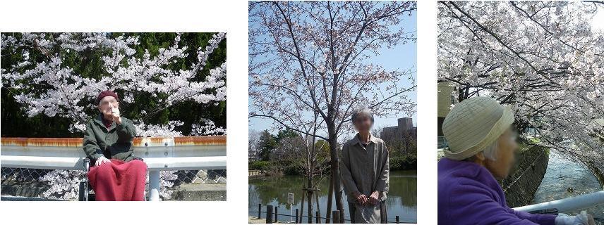 春のアクティビティあれこれ<アクティブライフ夙川・グループホーム>_c0107602_140910.jpg