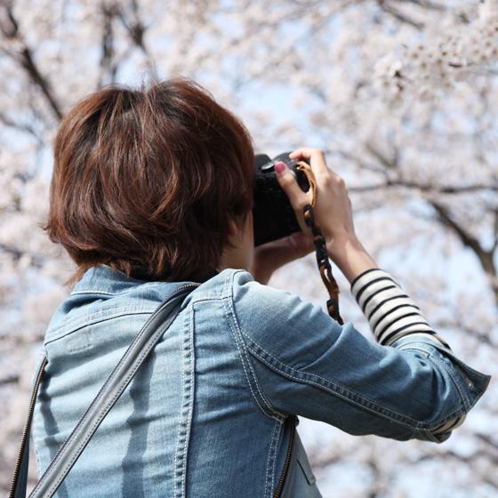 福井*カメラ女子の会 さくらを撮りにカメラ散歩♪ 〜2日目〜_a0189805_21515410.jpg