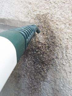 そとん壁の掃除_b0142417_18341688.jpg