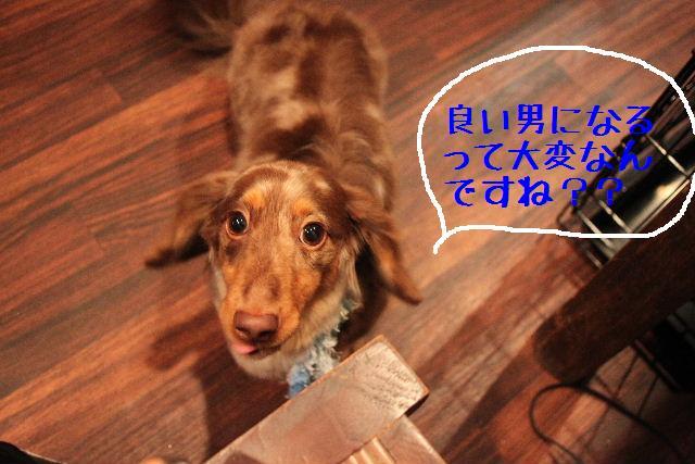 b0130018_2261032.jpg