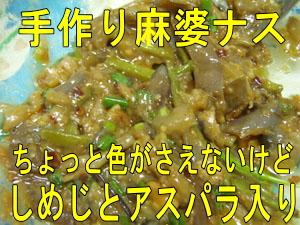 4月20日 麻婆ナスが食べたい!_d0086871_12262291.jpg