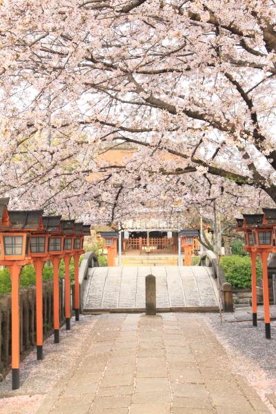 六孫王神社_e0051888_4554963.jpg