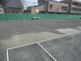 ◎テニスコート整備◎_d0027501_19355389.jpg