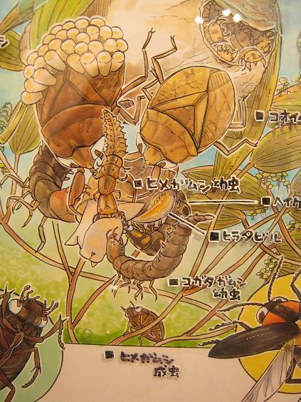 第2回 -mozo mozo-虫・蟲 展 その6_e0134502_15203039.jpg