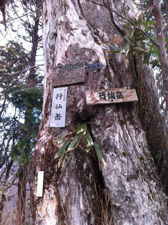 12.04.17(火) 大峰バイアスロン_a0062810_1437111.jpg