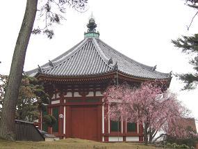桜名所めぐり 奈良公園_d0227610_17452866.jpg