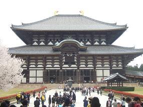 桜名所めぐり 奈良公園_d0227610_1758046.jpg