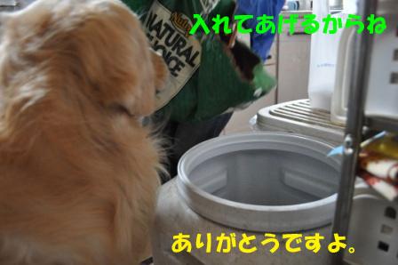 f0176830_18465074.jpg