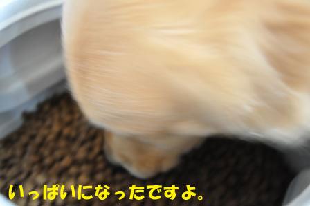 f0176830_1855356.jpg