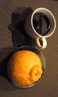 柑橘とコーヒー?_a0165239_6285527.jpg