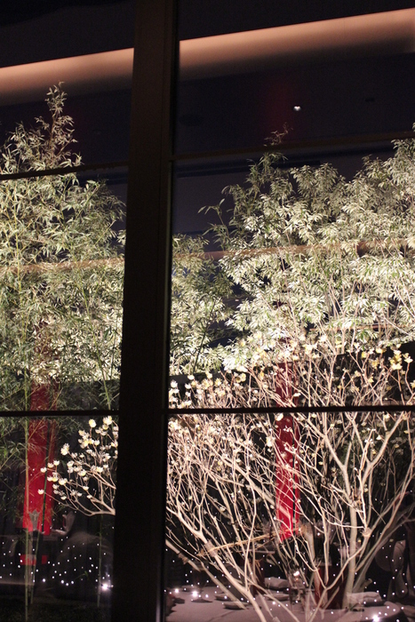 2012春旅☆有馬 ~その2~_e0232054_20111014.jpg