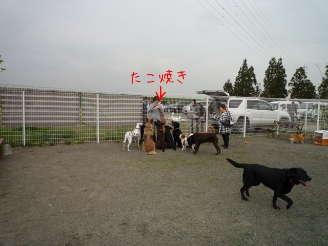 f0177261_22224987.jpg