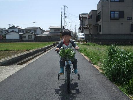 アイドル自転車に乗る♪_d0191262_179364.jpg