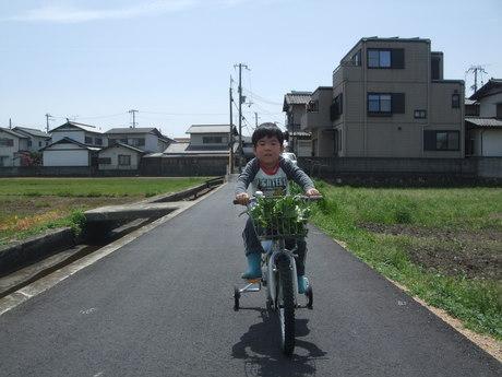 アイドル自転車に乗る♪_d0191262_1794910.jpg