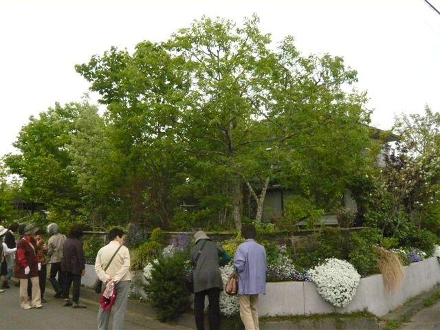 今日は日向市から宮崎のお庭ツアー・・・20名_b0137969_17521155.jpg